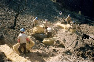 Corpsmembers use hay bales to shore up fire damaged hillside