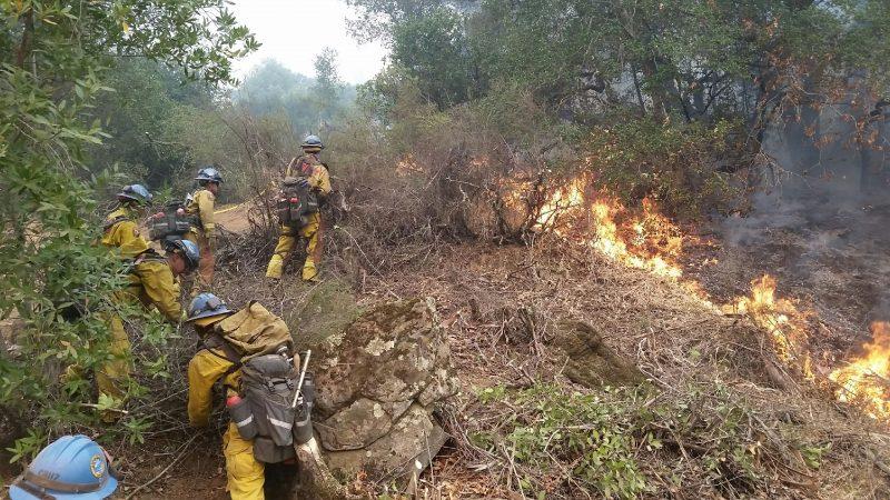Camarillo fire crew cutting fire lines