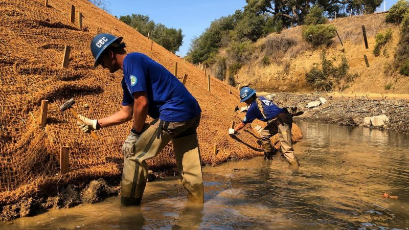 Male and female Corpsmembers use hammers to secure stakes in netting along a creek bank.