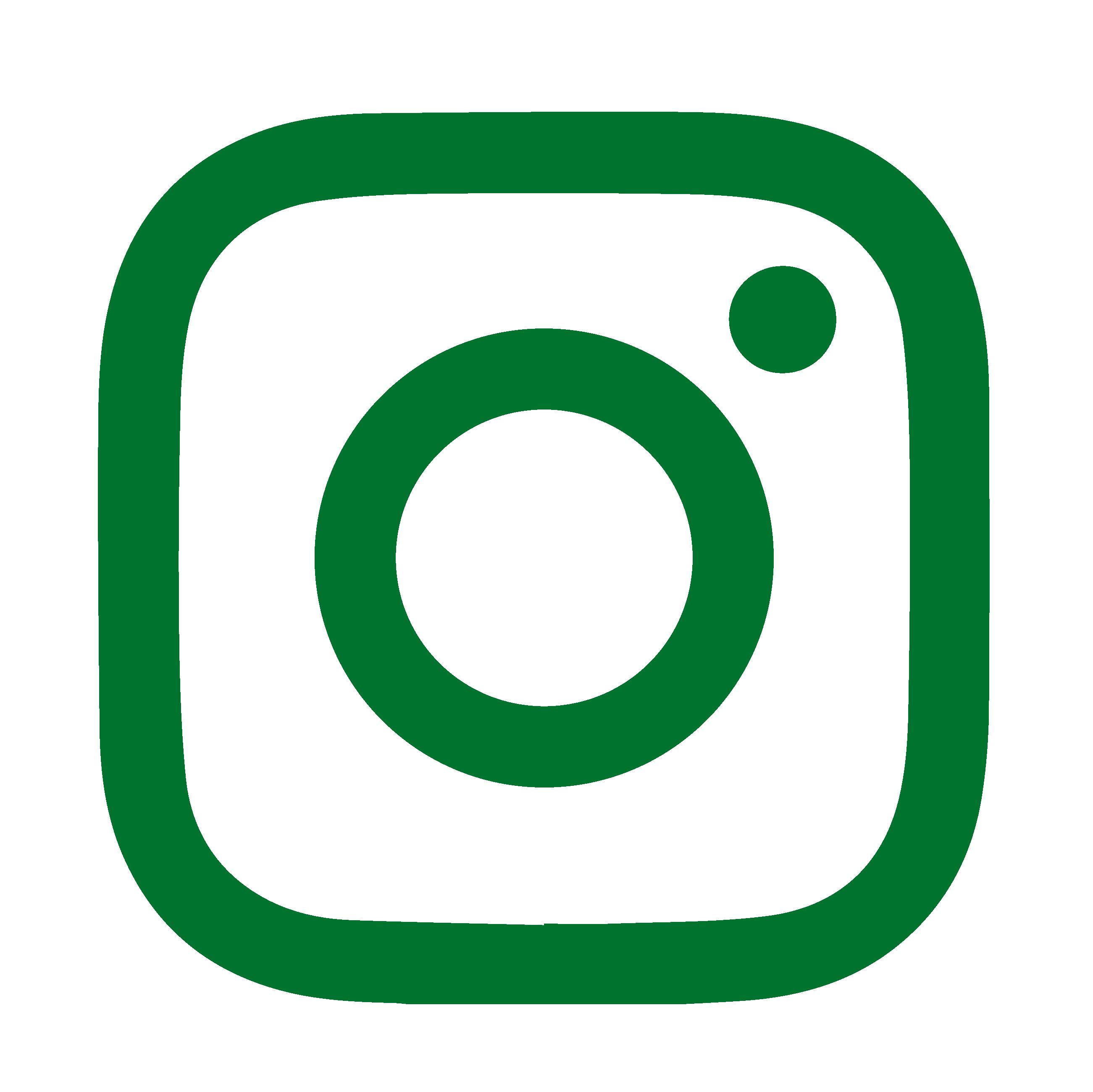 Green Instagram logo