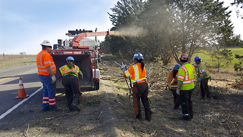 Crews landscaping highway ATP