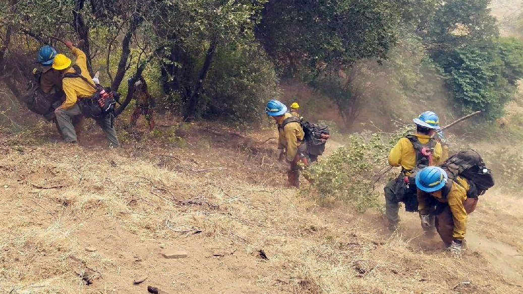 image Corpsmembers hike to fire line