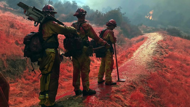 Corpsmembers carrying chain saws coverd in red fire retardant look off to flames in the distant trees
