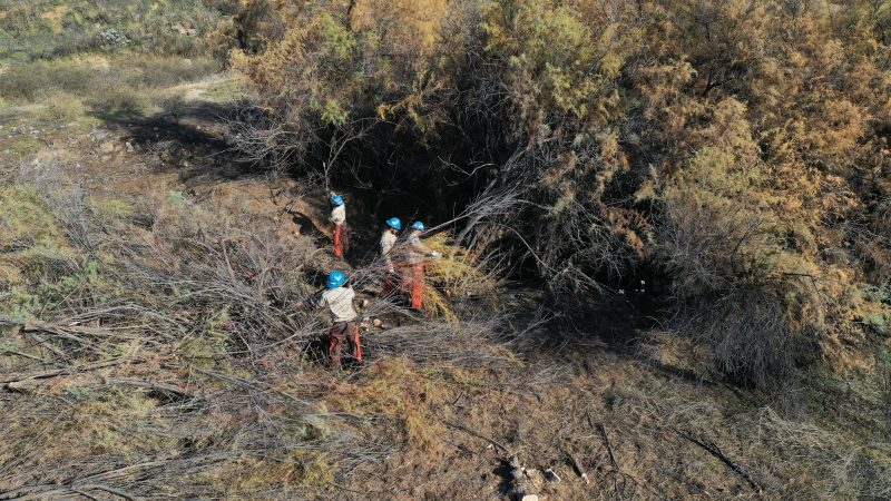Aerial image of four Corpsmembers removing brush from field after cutting it.