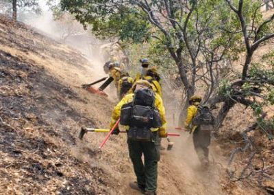 Butte Crews Cut Line on Deer Zone fires