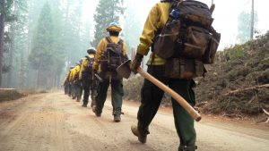 corpsmembers walking holding hand tools and wearing backpacks, walking on dirt road heading toward tall trees and smoke