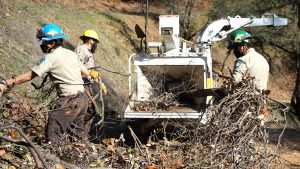 Corpsmembers pull branches from debris pile and haul them toward a wood chipper in the background of image